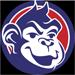 ChannelApe Logo